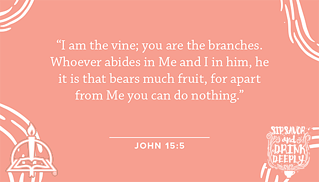sip-savor-drink-deeply-scripture-cards05.png