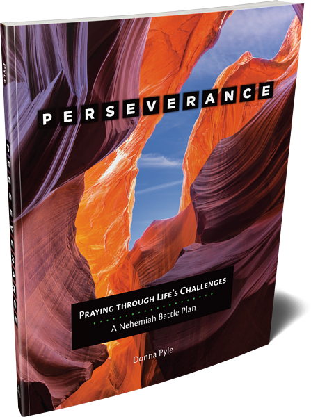 perseverance-by-donna-pyle-cover