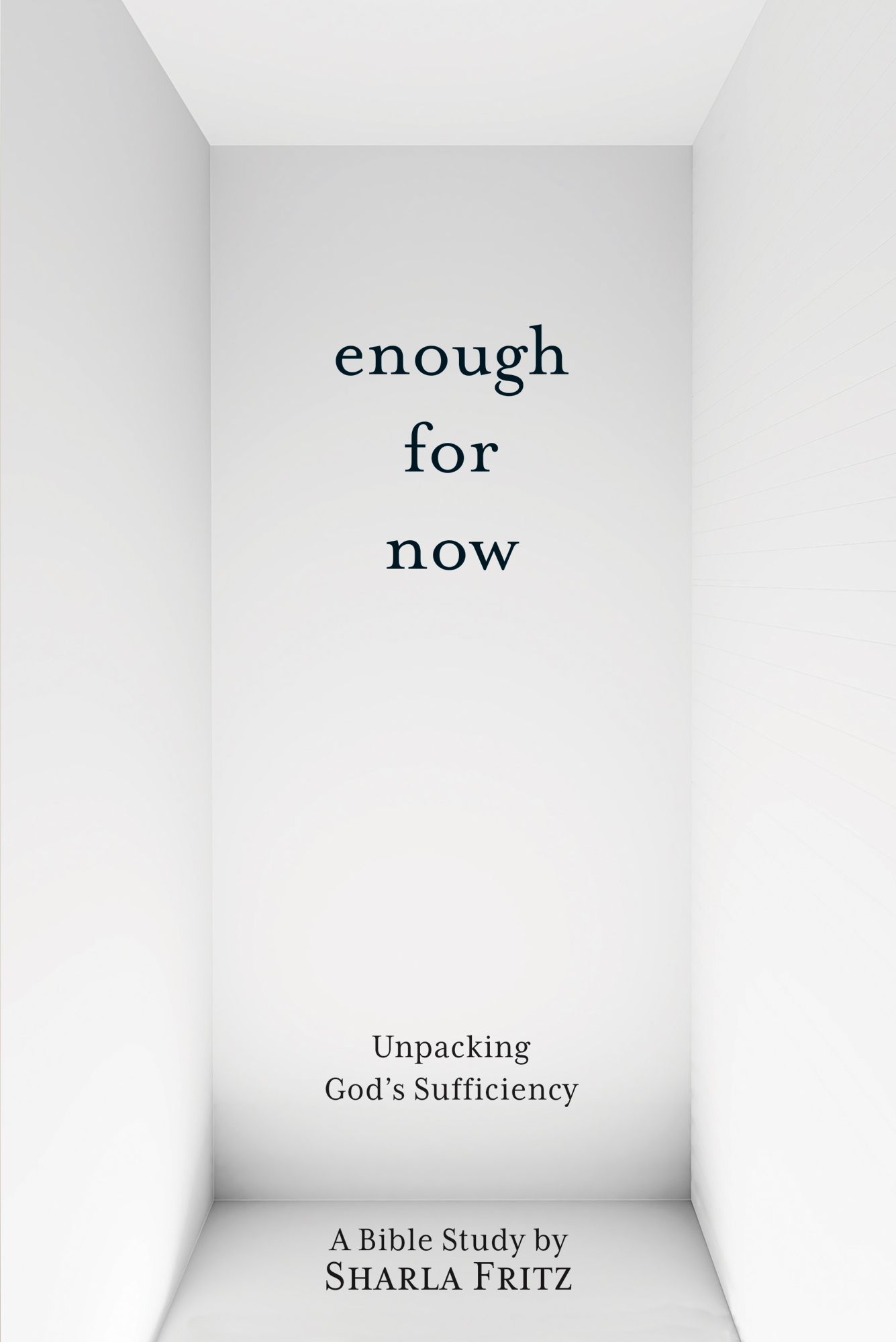 Cover for Enough for Now